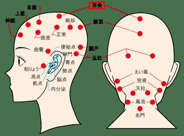 頭痛や疲れ目に効く万能ツボの百会