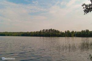 Озеро в Ленобласти