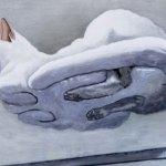 marco_nicolas_heinzen_hoovering_cat_likeyou