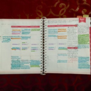 Day Designer, Target, Blue Sky, planner, planners, week on 2 pages, WO2P, coil bound, wire bound, work, office, color coding