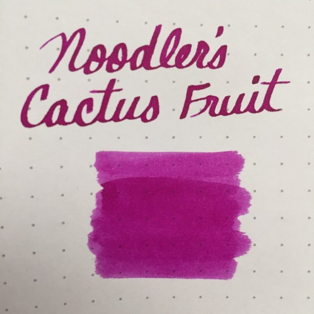fountain pen, fountain pen inks, noodlers, noodlers cactus fruit, rhodia, dot grid, holiday, gift ideas