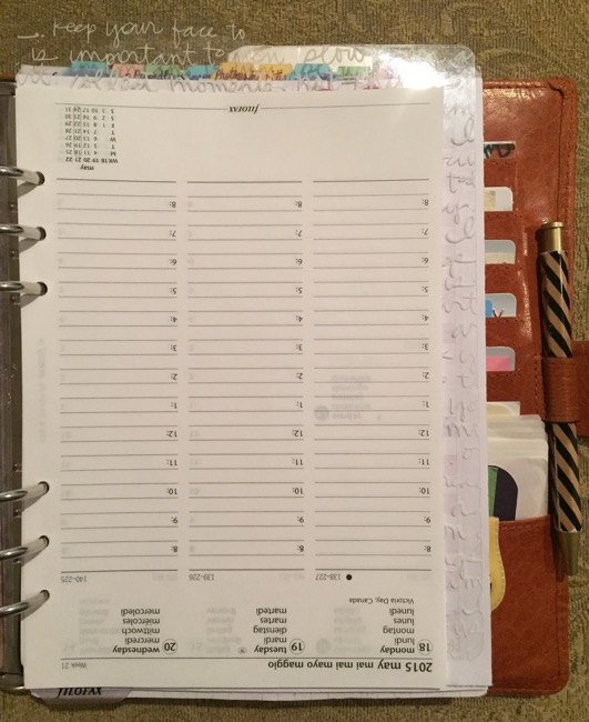 planner, filofax, van der spek, inserts, week on two pages, task list, notes, how to use old inserts
