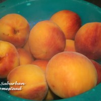 Peach Cobbler - A Southern Tradition