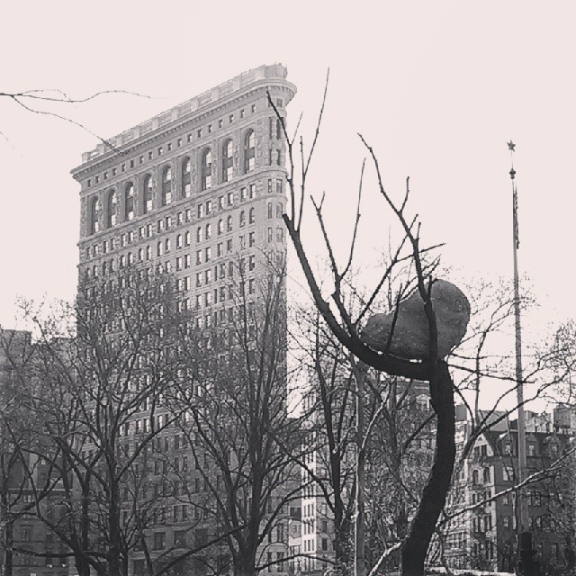 Flatiron Building and Bronze Tree with Boulder