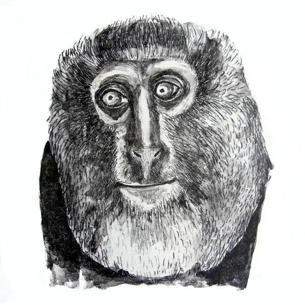 mono-buho