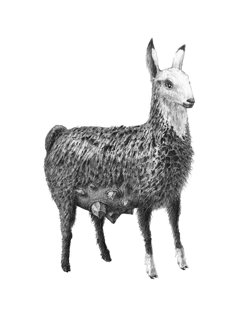 Bestiario de animales inexistentes dibujos y descripciones23 (1)