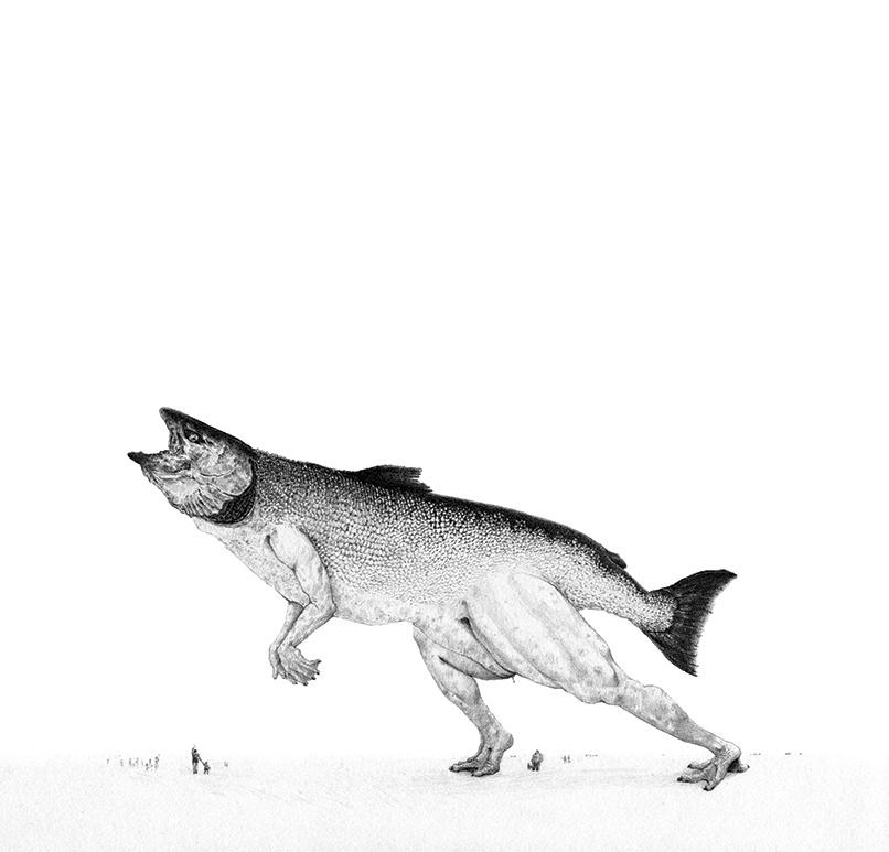 Bestiario de animales inexistentes dibujos y descripciones9 (1)