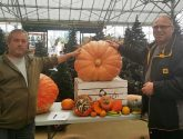 Boston residents crown their 'Pumpking' in charity fundraiser