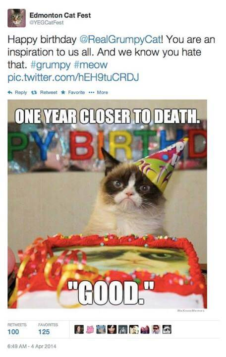 Happy birthday Grumpy Cat!