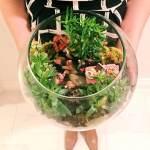 Edmonton Home + Garden Show - Little Day Miniatures - Terrarium