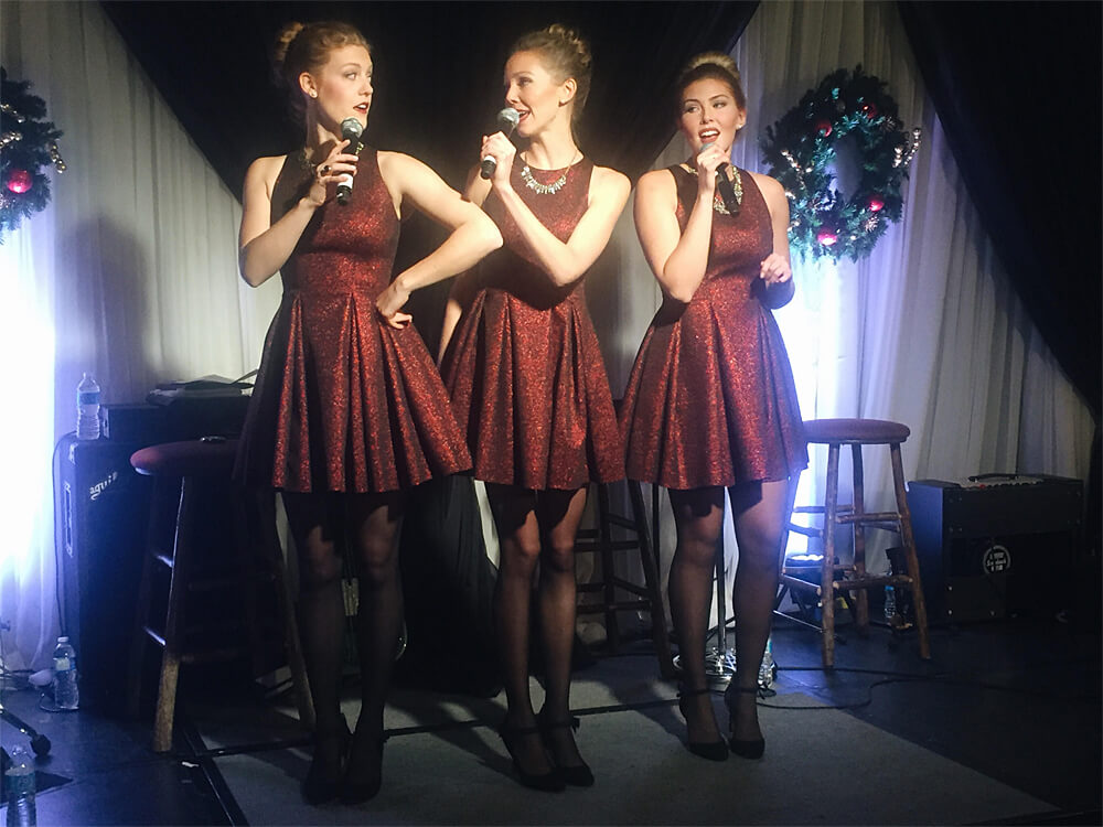 The Willows Trio Christmas in November