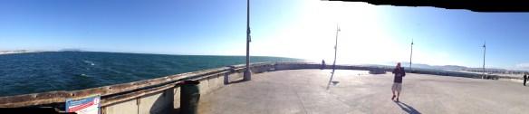 Venice Beack pier