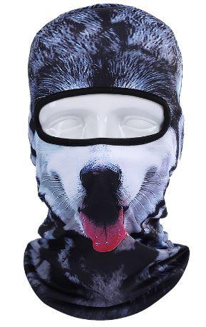 Skimaske vinter hund