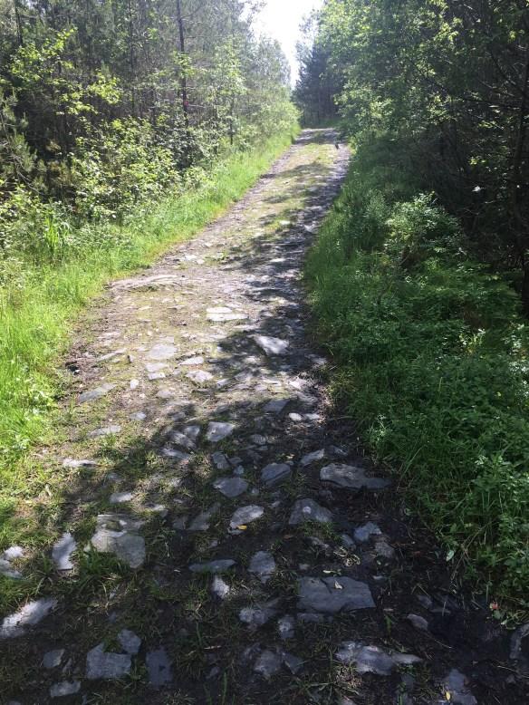 Askøy på langs - etappe 2 - tørre veier