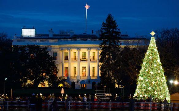 Julekalender luke nummer 12 Juletre Det Hvite hus