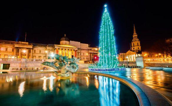 Julekalender luke nummer 14 norsk juletre på Trafalgar Square London