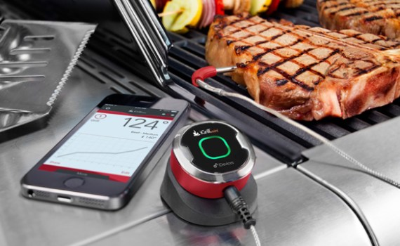 summer-gadgets-igrill-mini