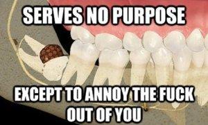 Scumbag-wisdom-teeth