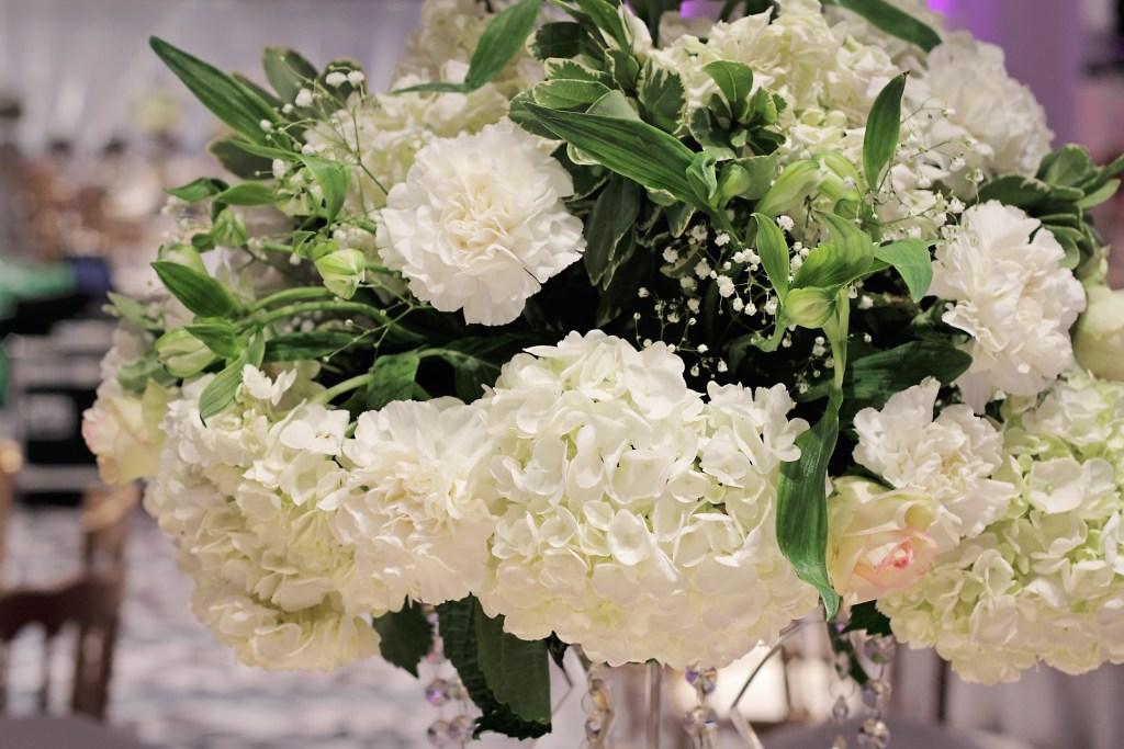 Hydrangea greens flowers ddd