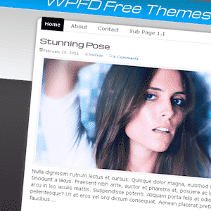 Activate Theme - a free WordPress theme designed by Lisa Sabin-Wilson for WordPress For Dummies 4th Edition