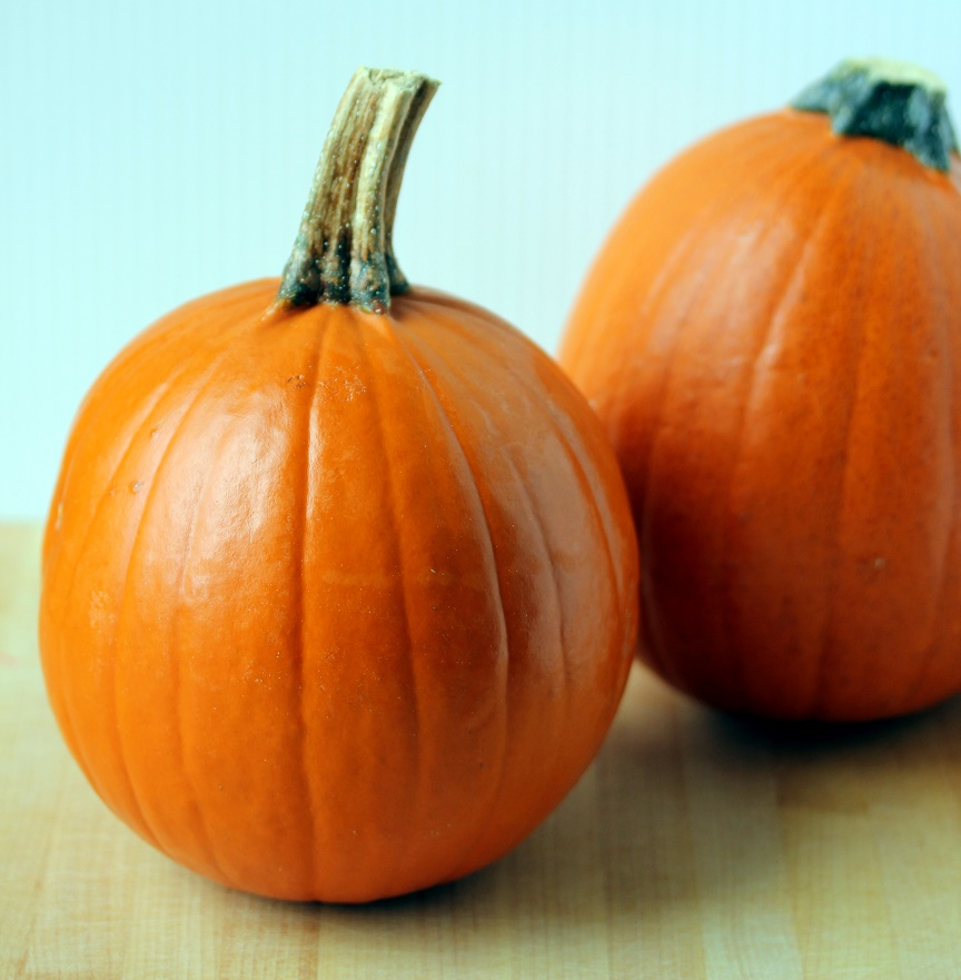 Fresh Pumpkin Puree And Pepitas Lisa 39 S Dinnertime Dish
