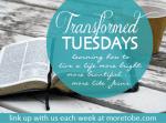 transformedtuesday (2)