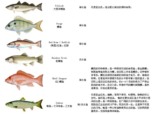 Names of fish   lisparc