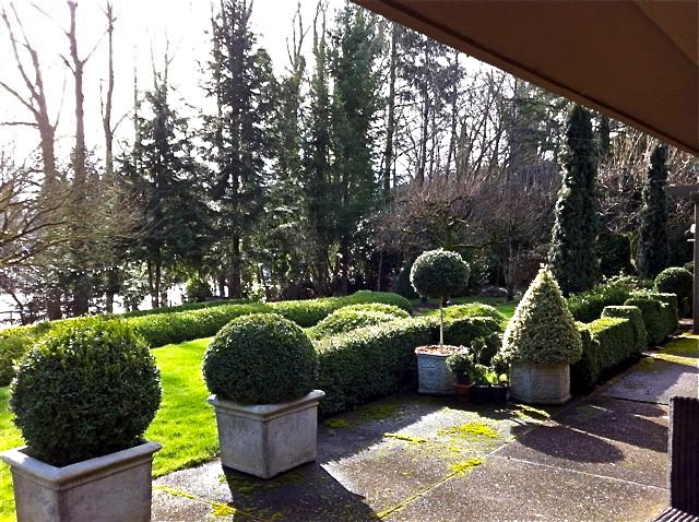 Topiary are a great way to define a patio or an entry