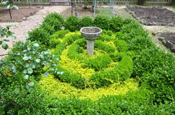 Every English Garden needs a Knot Garden