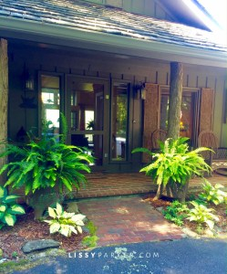 front porch in the mountains with ferns