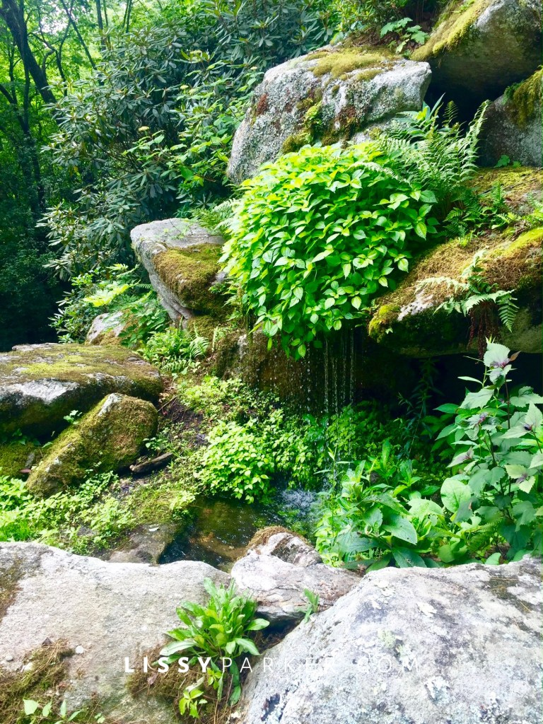 maountain water fall garden
