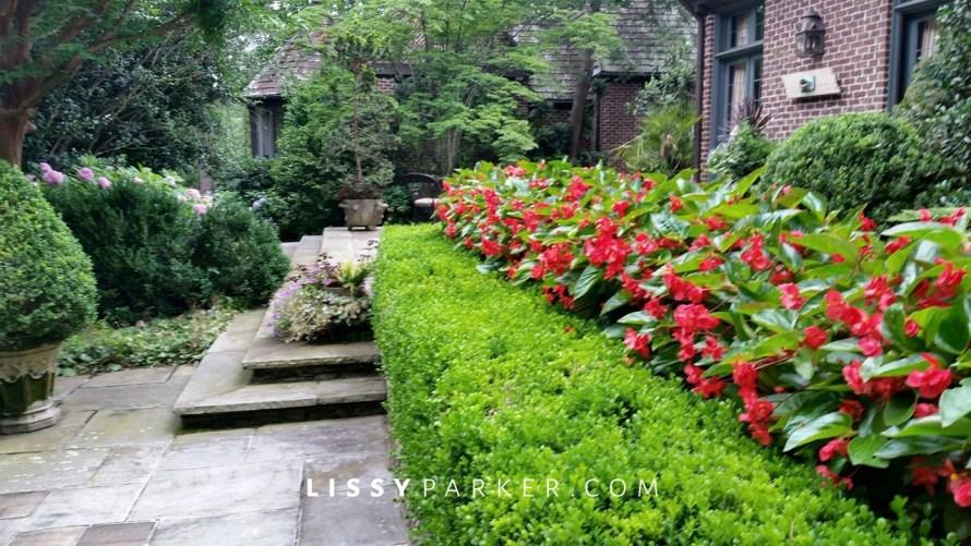steps in the garden