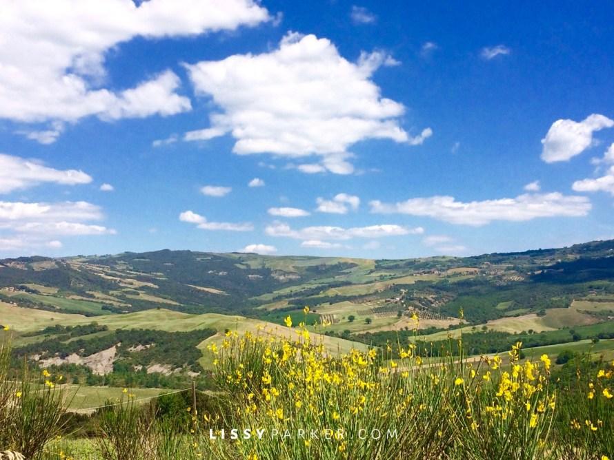 Tuscany fields of flowers
