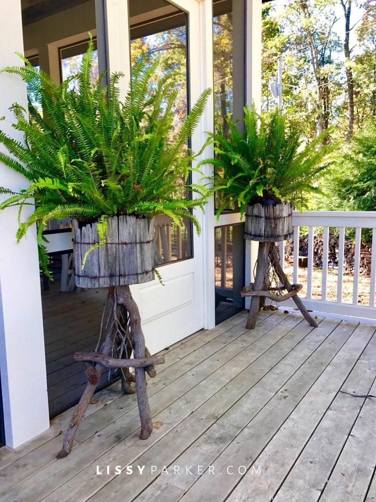 rustic fern planters