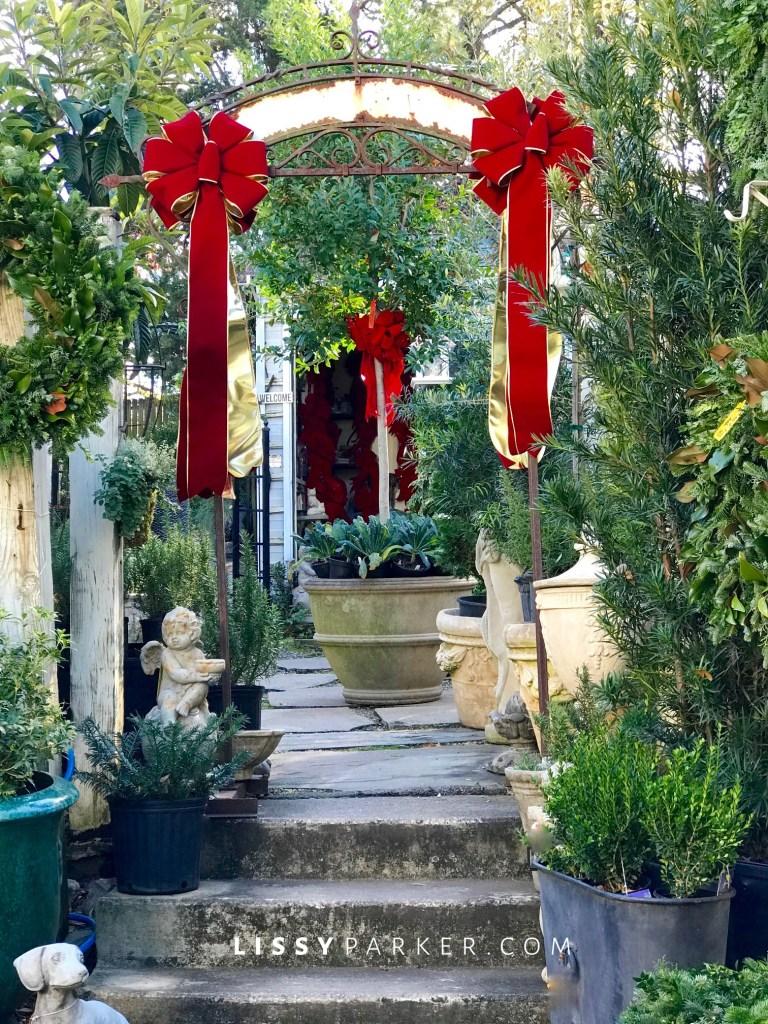 garden ideas for Christmas