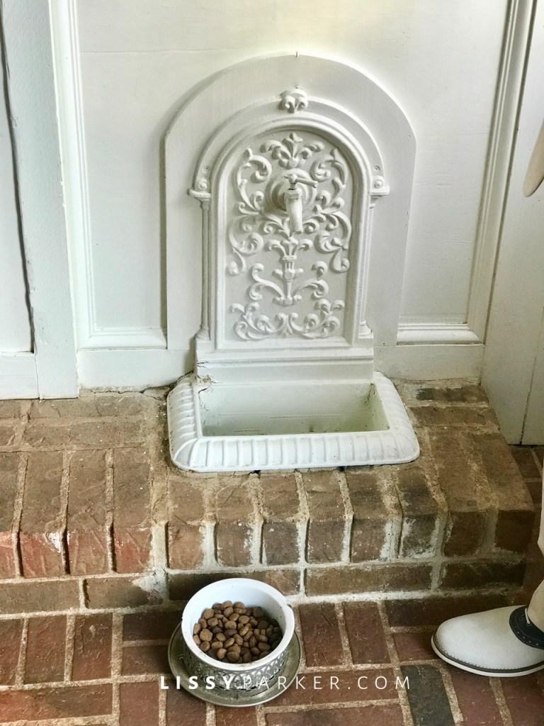 dog bowl fountain