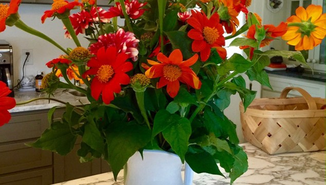 Friday Flowers—more Birthday bunches of Tithonia