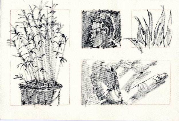 ink drawings of people and plants