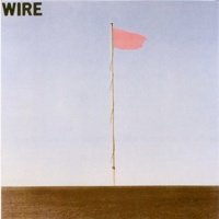 Wire Pink Flag
