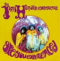 4. Are You Experienced