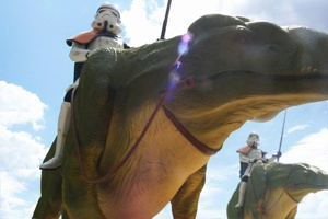 Dewback