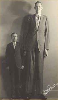 Robert-Wadlow