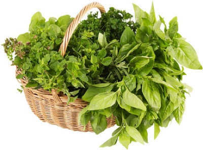 Freshherbs-1