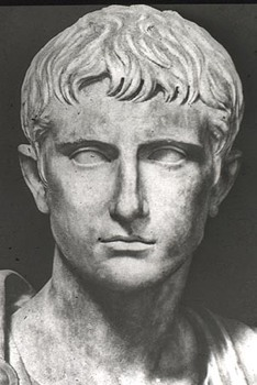 Augustus Prima Head