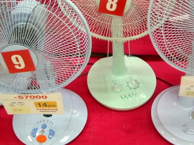 Korean Fans Closeup