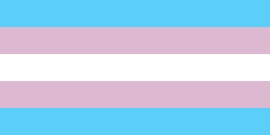 800Px-Transgender Pride Flag.Svg