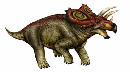 Coahuilaceratops