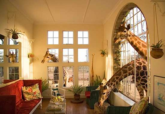 giraffe_manor_01.jpg