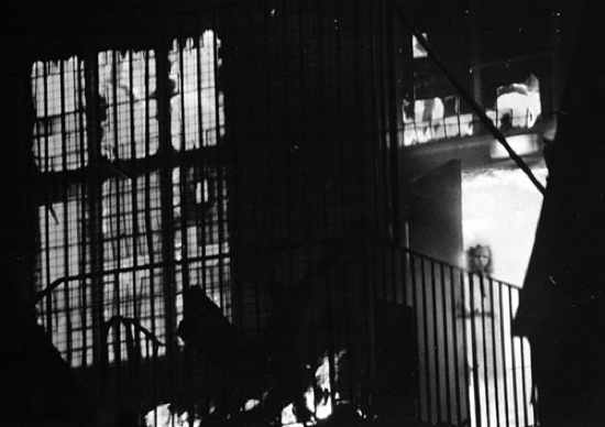 Wem Town Hall Ghost 001-1