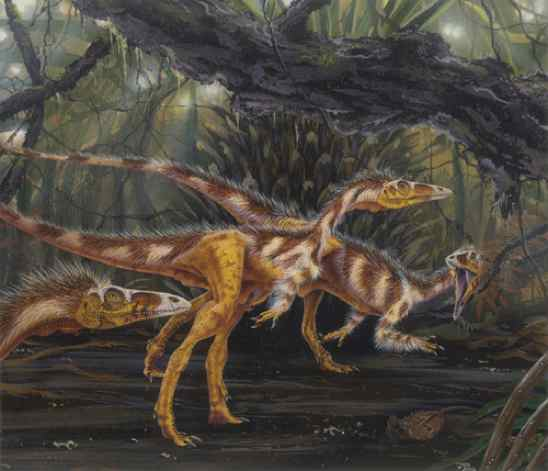 Compsognathus